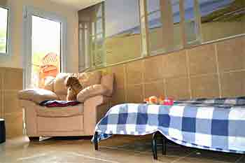 Very large dog apartment with murals of windows looking out to a sunny brach theme with a full size single bed and a Lhasa Apso dog sitting in a full size armchair, looking out to the garden